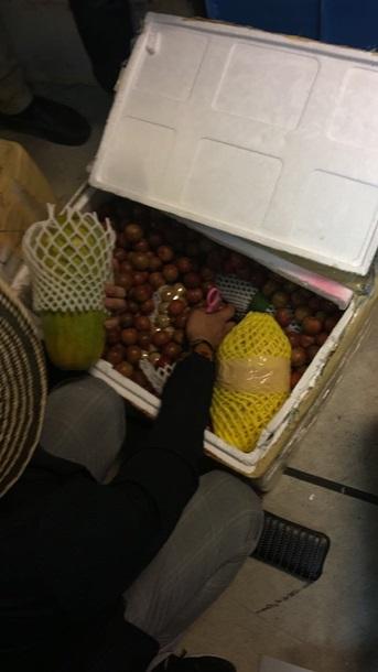 Một công dân Việt Nam bị bắt tại sân bay Borispol với lượng hoa quả xứ nhiệt đới trị giá 100 ngàn grip
